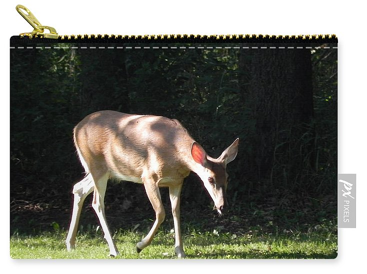 Deer Carry-all Pouch featuring the photograph Deer In Shadows by Joanne Rungaitis