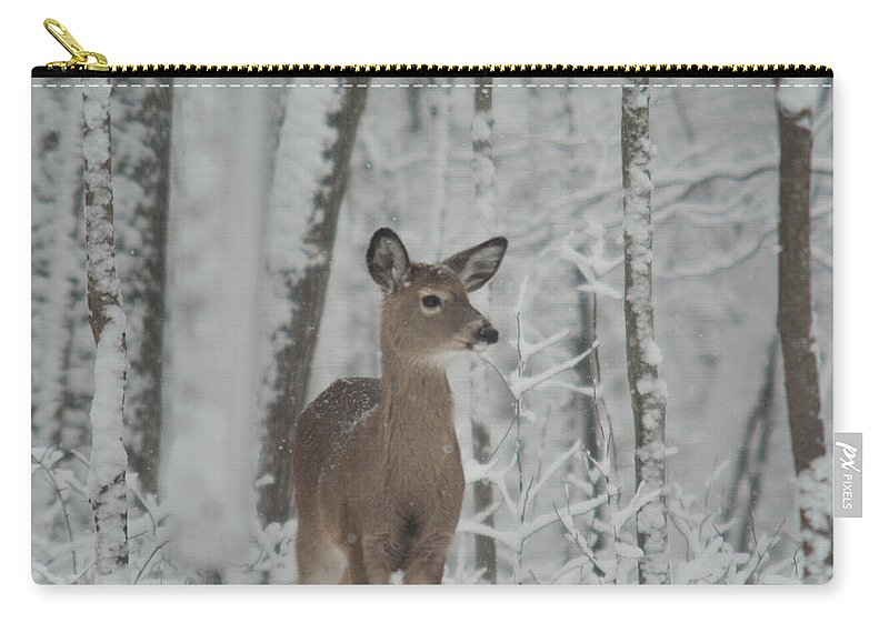 Deer Carry-all Pouch featuring the photograph Deer In The Snow by Douglas Barnett