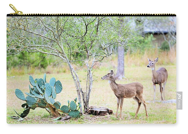 Carry-all Pouch featuring the photograph Deer19 by Jeff Downs
