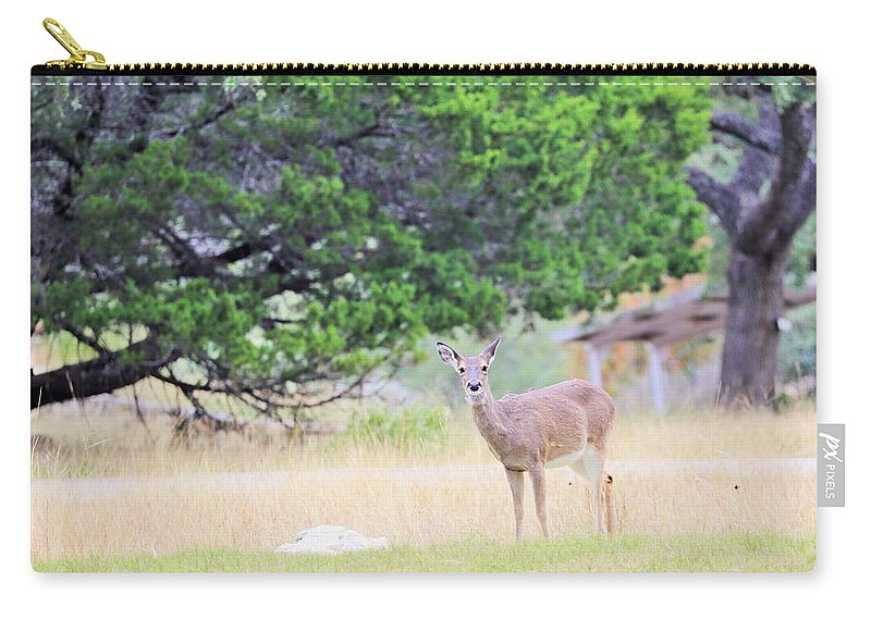 Carry-all Pouch featuring the photograph Deer21 by Jeff Downs
