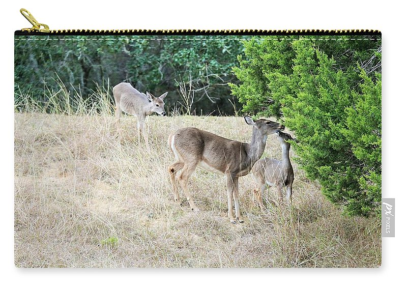Carry-all Pouch featuring the photograph Deer24 by Jeff Downs