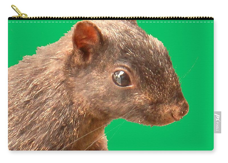 Squirrel Carry-all Pouch featuring the photograph Definately Bright Eyed by Ian MacDonald