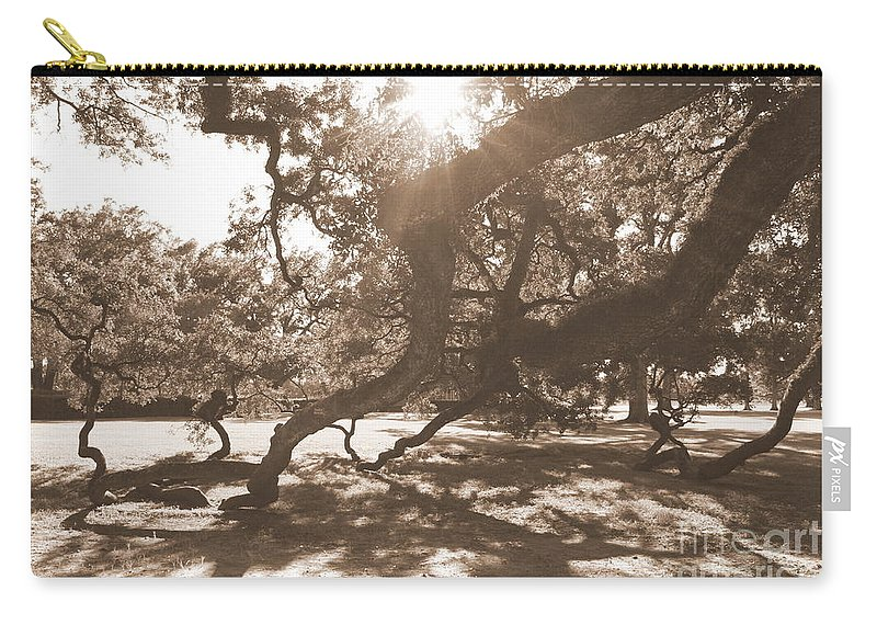 Sepia Carry-all Pouch featuring the photograph Defying Gravity In Sepia by Carol Groenen
