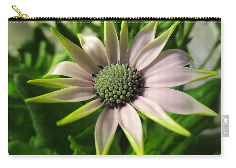 Handsome Carry-all Pouch featuring the photograph Delicate Dreamer by Rosita Larsson