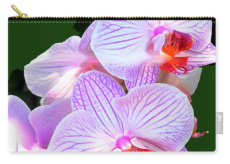 Flower Carry-all Pouch featuring the photograph Delicate by Ian MacDonald