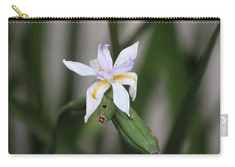 Pale Purple Iris Carry-all Pouch featuring the photograph Delicate Pale Purple Iris by Colleen Cornelius