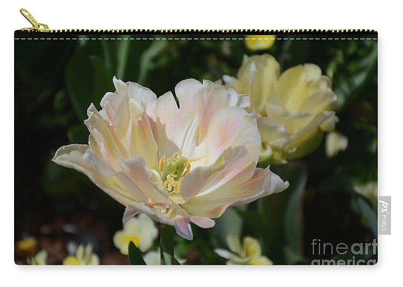 Carry-all Pouch featuring the painting Delicate Pink Tulip 2 by Constance Woods
