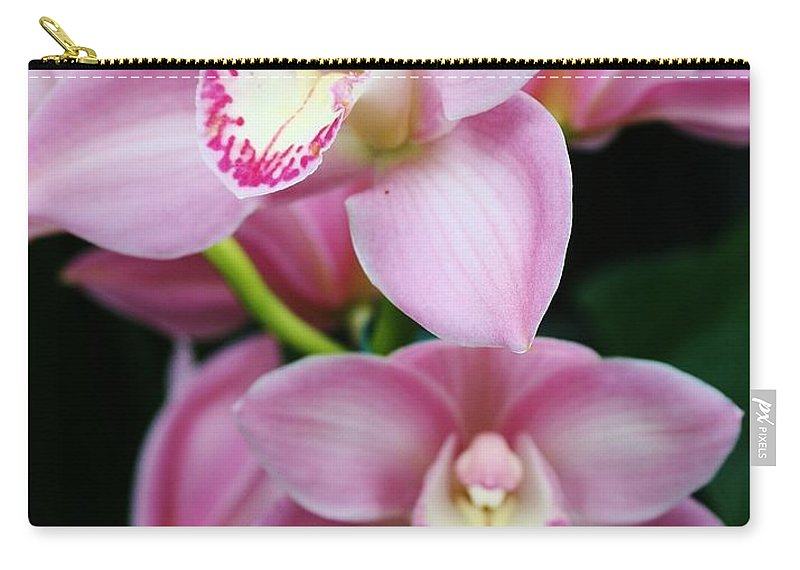 Flora Carry-all Pouch featuring the photograph Delightfully Pink by Bruce Bley