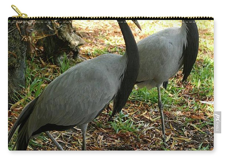 Demoiselle Cranes Carry-all Pouch featuring the photograph Demoiselle Cranes by Gregory E Dean