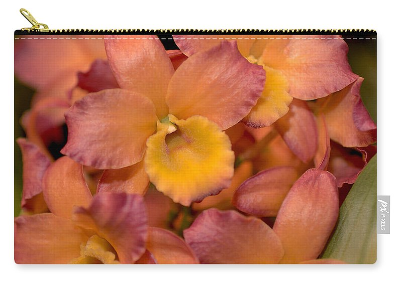 Orchid Carry-all Pouch featuring the photograph Dendrobium Oriental Smile by Terri Winkler