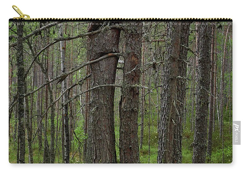 Finland Carry-all Pouch featuring the photograph Dependence Can Hurt by Jouko Lehto