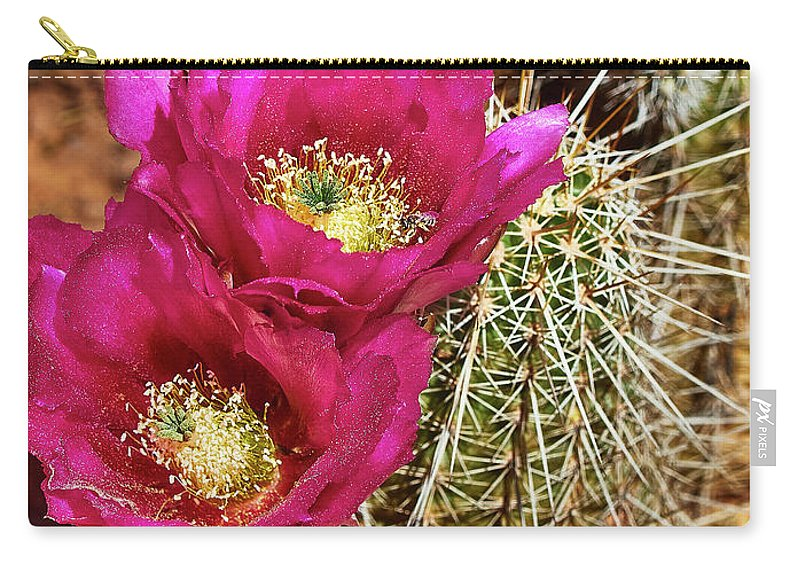 Cactus Carry-all Pouch featuring the photograph Desert Bloom by Steve Ondrus
