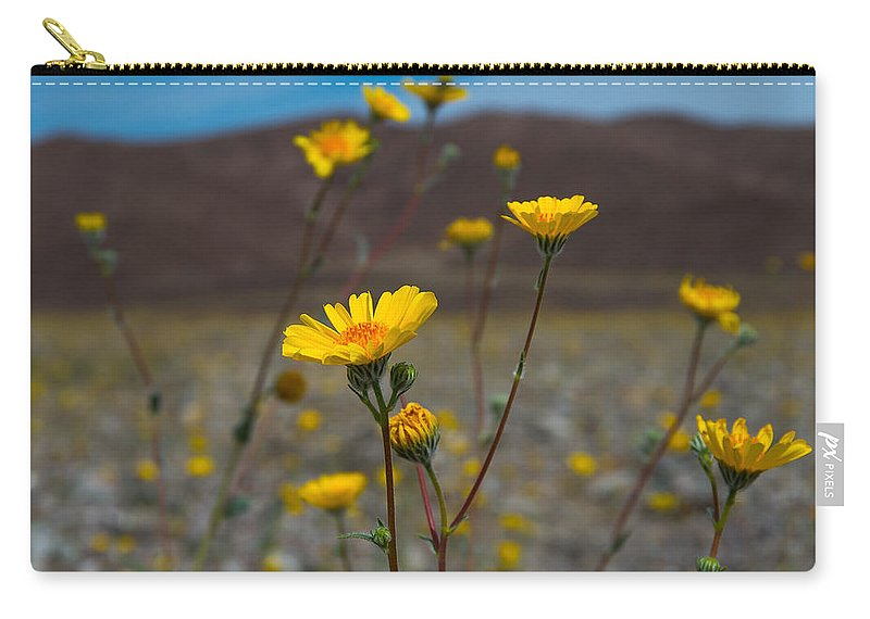 Death Valley Carry-all Pouch featuring the photograph Desert Blooms by Stephen Whalen