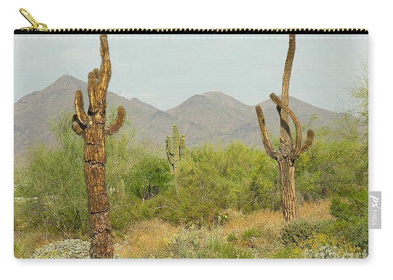 Cactus Carry-all Pouch featuring the photograph Desert Cactus by Diane Greco-Lesser