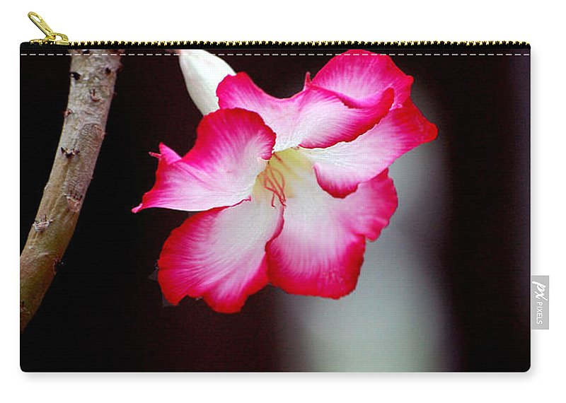 Flower Carry-all Pouch featuring the photograph Desert Flower by Robert Meanor