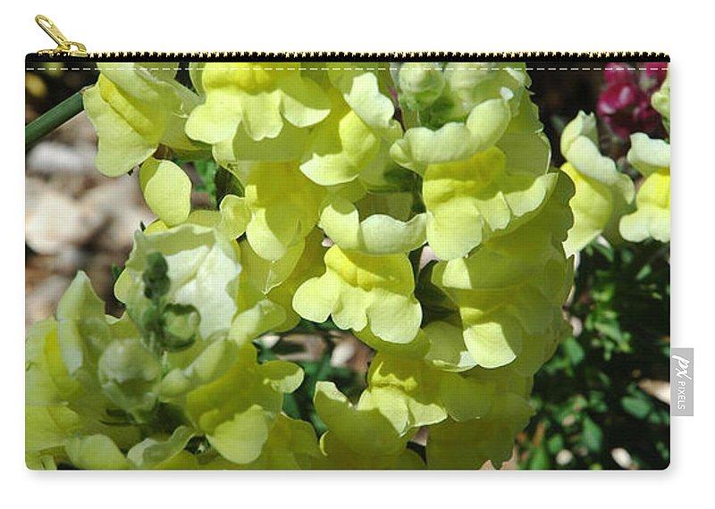 Flowers Carry-all Pouch featuring the photograph Desert Flowers Virginia City Nevada by LeeAnn McLaneGoetz McLaneGoetzStudioLLCcom