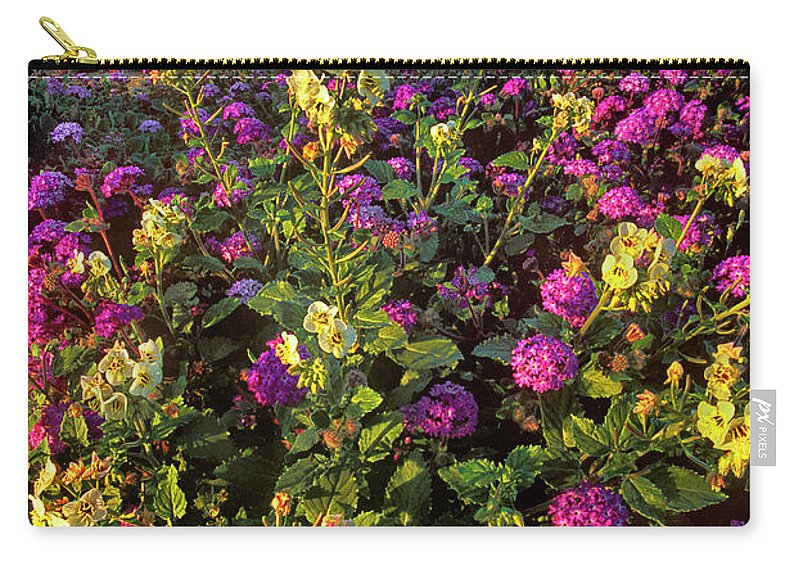 Dave Welling Carry-all Pouch featuring the photograph Desert Sand Verbena And Brown-eyed Primrose Below The Coyote Mountains California by Dave Welling