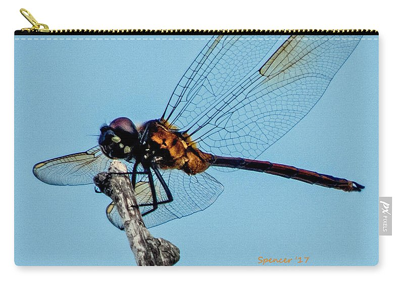 Florida Carry-all Pouch featuring the photograph Details by T Guy Spencer
