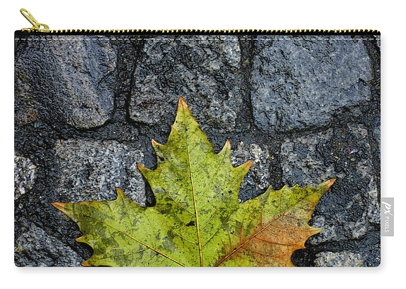 Nature Carry-all Pouch featuring the photograph Deville by Skip Hunt