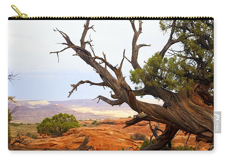 Southwest Art Carry-all Pouch featuring the photograph Devils Garden 2 by Marty Koch