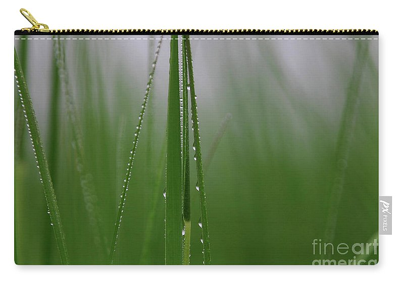 Grass Carry-all Pouch featuring the photograph Dew Drops by Karol Livote