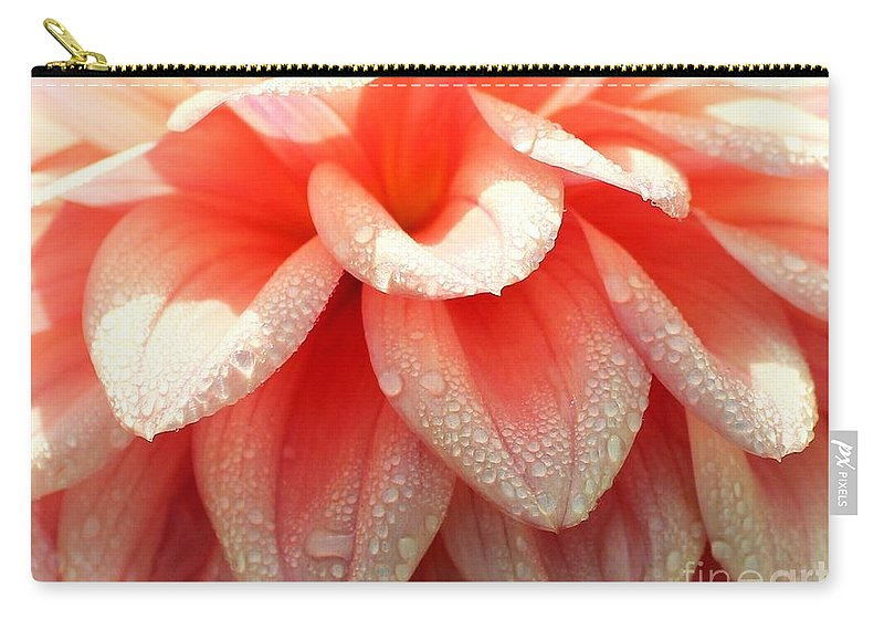 Dahlias Carry-all Pouch featuring the photograph Dew -drops On The Dahlia 2 by Jane Powell