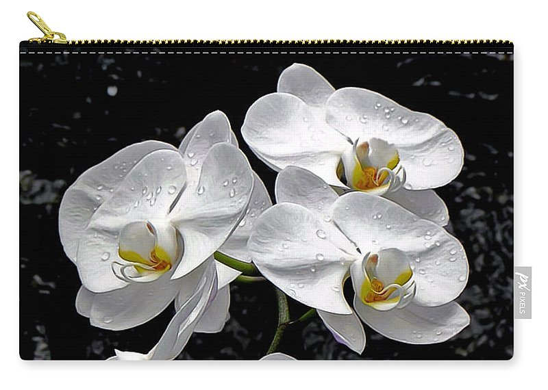 Orchid Carry-all Pouch featuring the photograph Dew-kissed Cascading Orchids by Sue Melvin