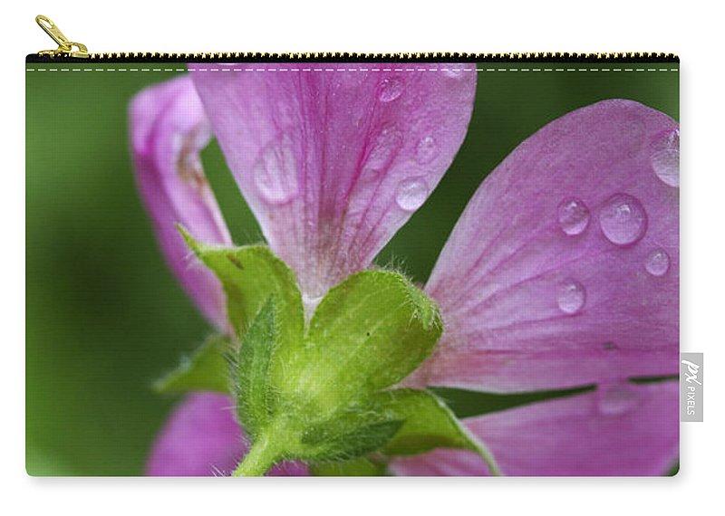 Flower Carry-all Pouch featuring the photograph Dew Kisses by Deborah Benoit