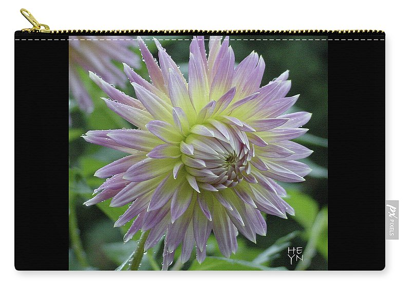 Flower Carry-all Pouch featuring the photograph Dewy Dahlia by Shirley Heyn
