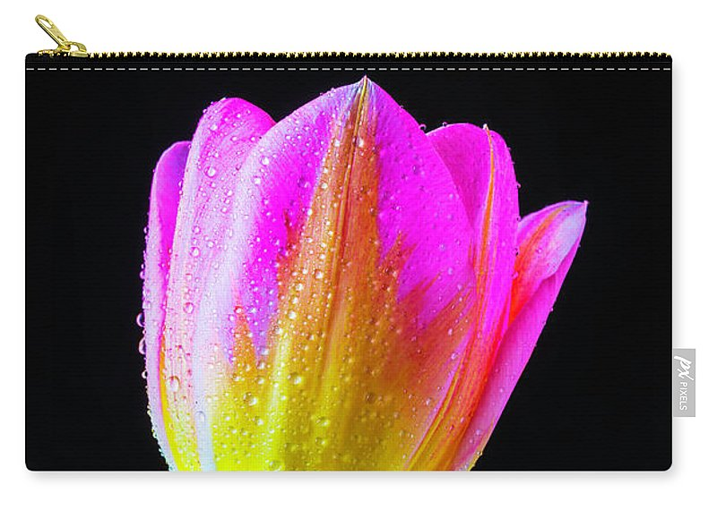 Green Carry-all Pouch featuring the photograph Dewy Pink Yellow Tulip by Garry Gay