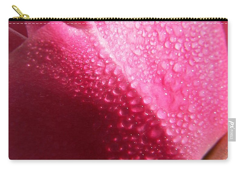 Pink Roses Carry-all Pouch featuring the photograph Dewy Rose by Amy Fose