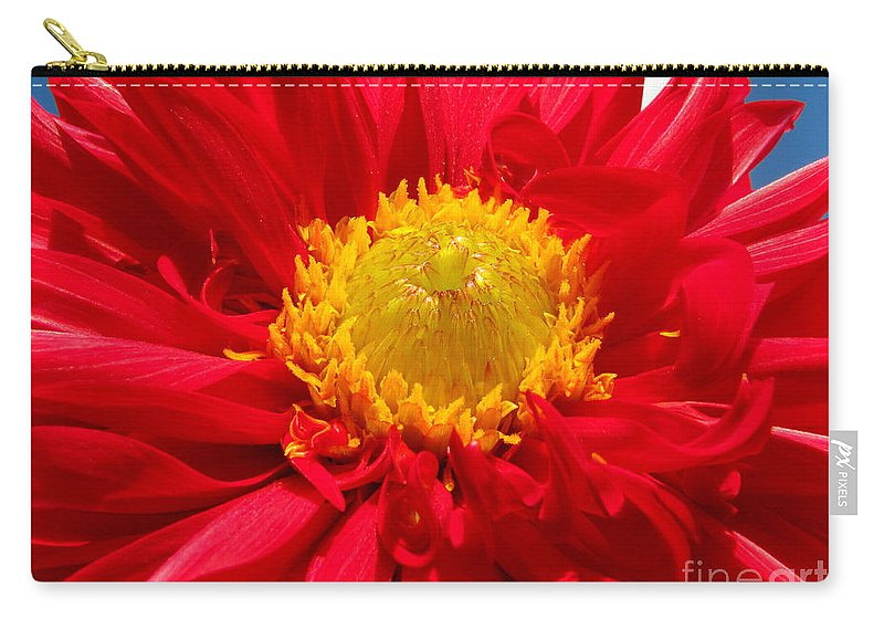 Dhalia Carry-all Pouch featuring the photograph Dhalia by Amanda Barcon