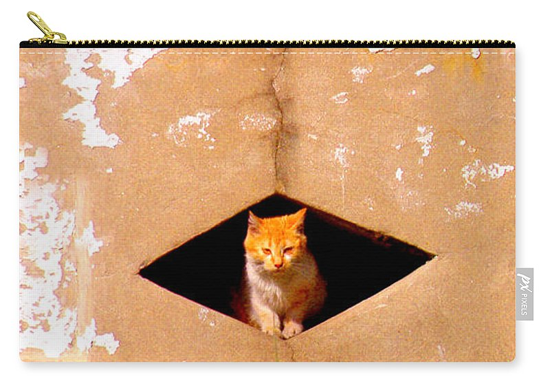 Cat Carry-all Pouch featuring the photograph Diamond Kitty by Albert Stewart