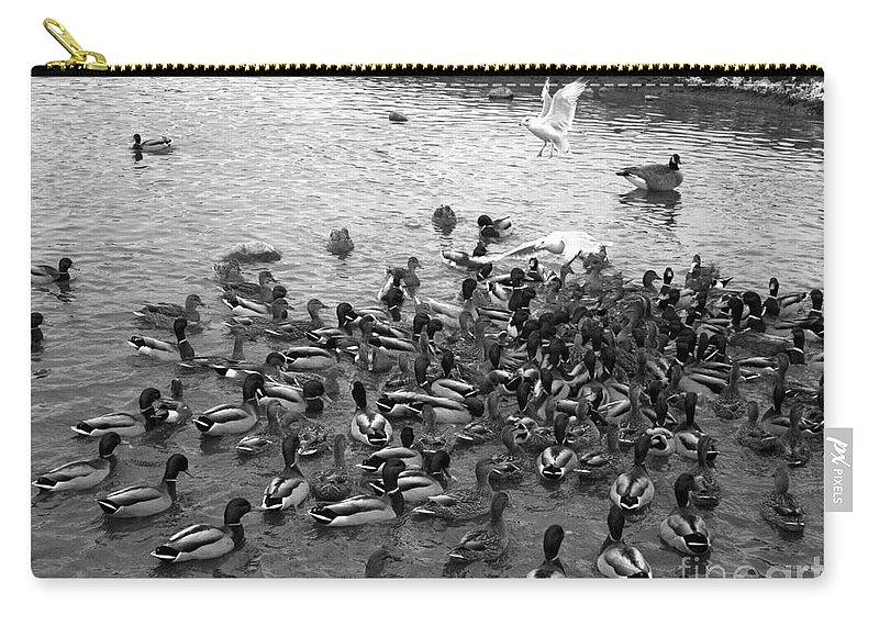 Ducks Carry-all Pouch featuring the photograph Dinner Is Served - Black And White by Carol Groenen