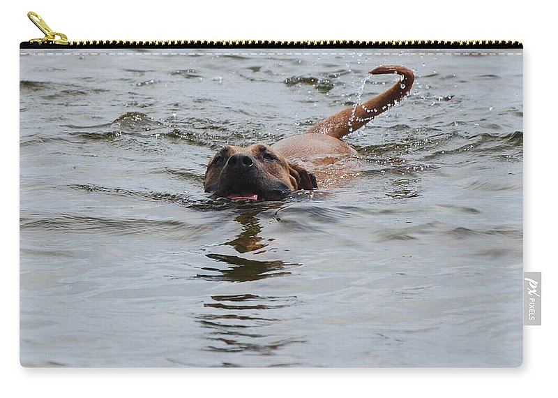 Swimming Carry-all Pouch featuring the photograph Dirty Water Dog by Rob Hans
