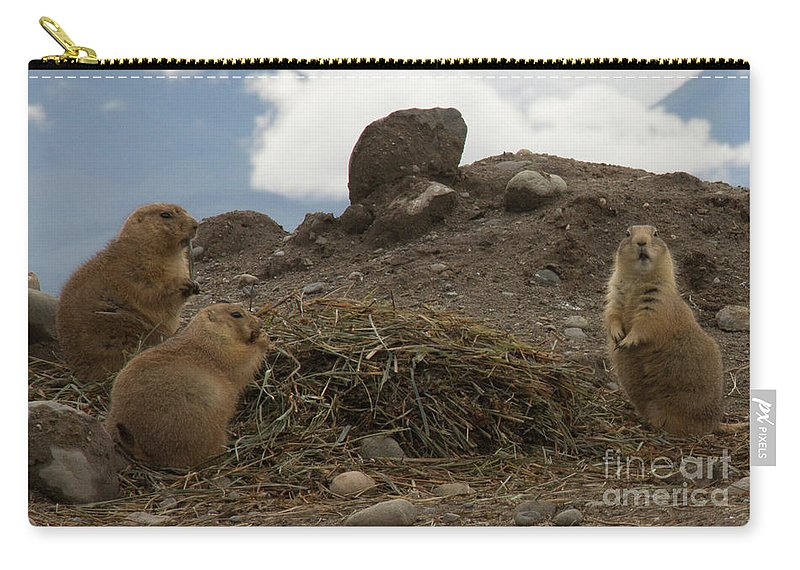 Animals Carry-all Pouch featuring the photograph Discovery Bay-nov-138 by Roger Patterson