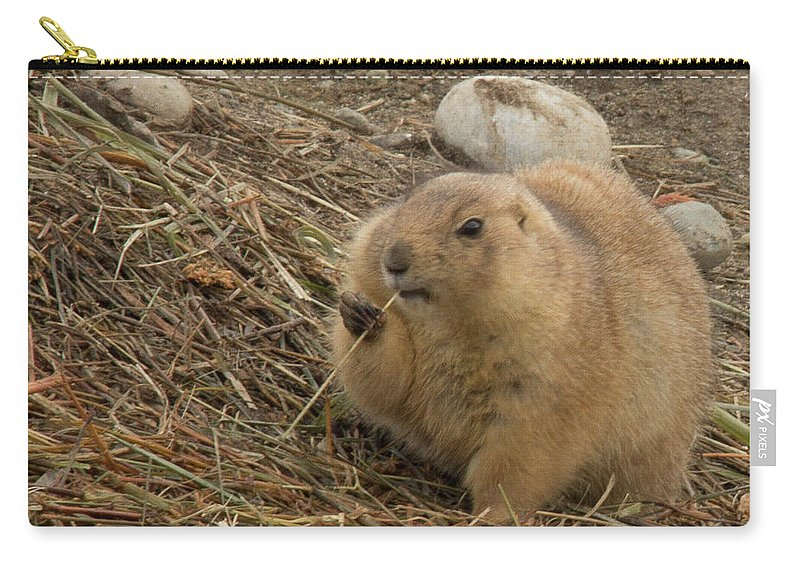 Animals Carry-all Pouch featuring the photograph Discovery Bay-nov-140 by Roger Patterson
