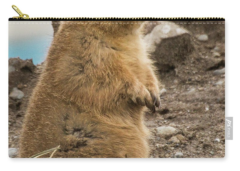 Animals Carry-all Pouch featuring the photograph Discovery Bay-nov-148 by Roger Patterson
