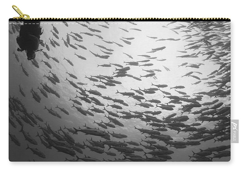Fish Carry-all Pouch featuring the photograph Diver And A Large School Of Bigeye by Steve Jones