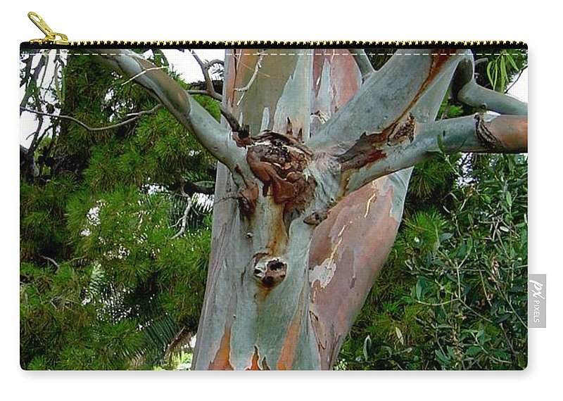 Deer Carry-all Pouch featuring the photograph Do You See What I See by Joanne Smoley