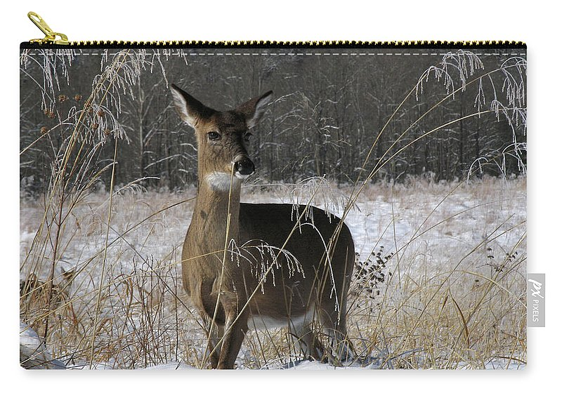 Deer Carry-all Pouch featuring the photograph Doe In The Cove by Douglas Stucky
