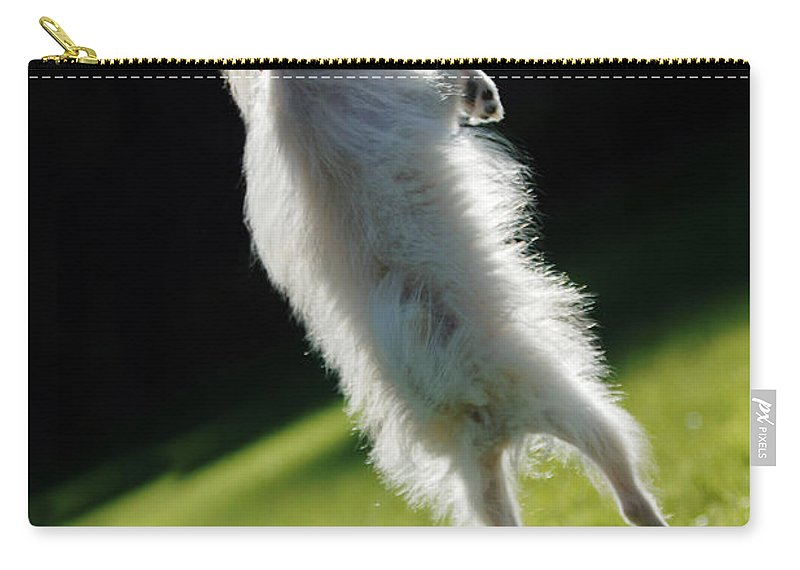 Animal Carry-all Pouch featuring the photograph Dog - Jumping by Jill Reger