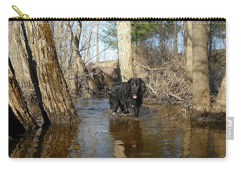 Dog Carry-all Pouch featuring the photograph Dog Wading In Swollen River by Kent Lorentzen
