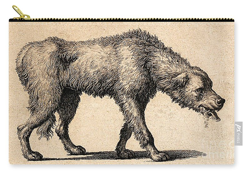 Historic Carry-all Pouch featuring the photograph Dog With Rabies, Engraving, 1800 by Wellcome Images