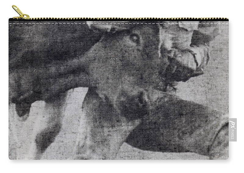 California Scenes Carry-all Pouch featuring the photograph Doggin It by Norman Andrus