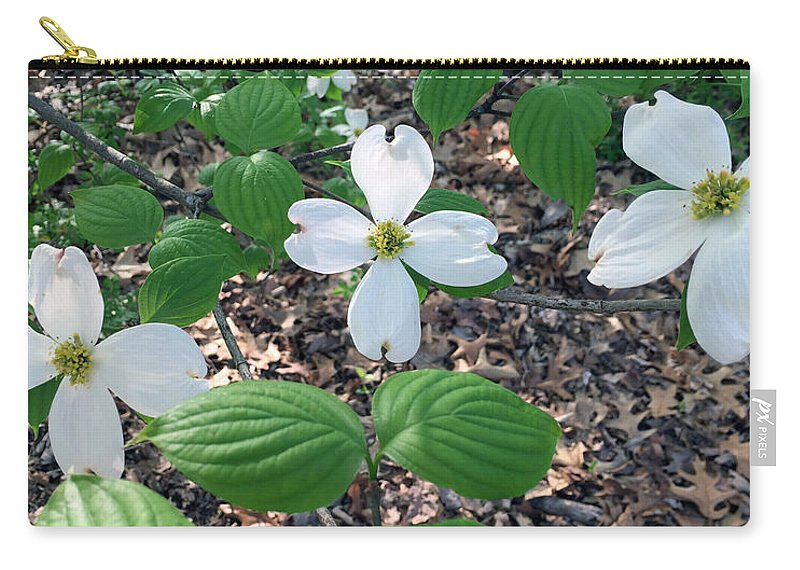 Dogwood Carry-all Pouch featuring the photograph Dogwood Blossoms by James Pinkerton