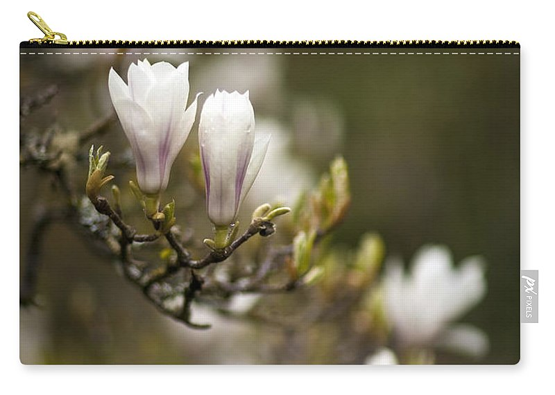 Flower Carry-all Pouch featuring the photograph Dogwood Gathering by Mike Reid