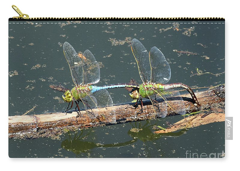 Insects Carry-all Pouch featuring the photograph Doing What They Do by William Tasker