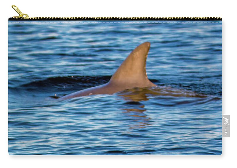 Dolphin Carry-all Pouch featuring the photograph Dolphin Sighting by Patrick Burke