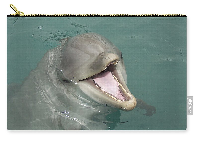 Dolphin Carry-all Pouch featuring the painting Dolphin by Sean M